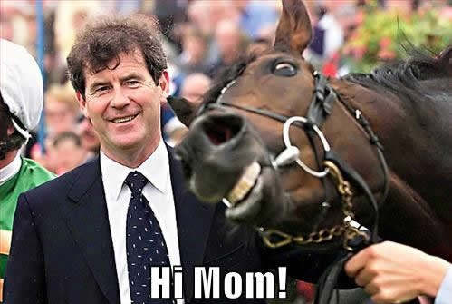 political pictures horse racing derby hi mom top 10 funny kentucky derby meme's i laughed at the crippled girl